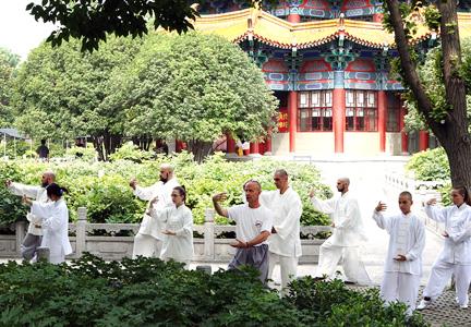 Ρόου Τσουάν στο Μητροπολιτικό Πάρκο της Λούο Γιαν